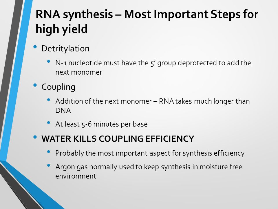RNA synthesis – Most Important Steps for high yield