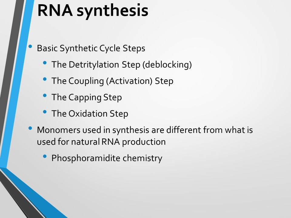 RNA synthesis Basic Synthetic Cycle Steps