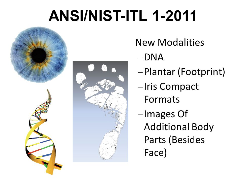 ANSI/NIST-ITL 1-2011 New Modalities DNA Plantar (Footprint)
