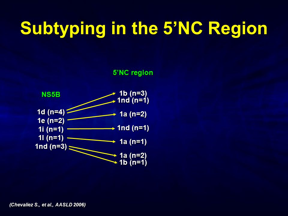 Subtyping in the 5'NC Region