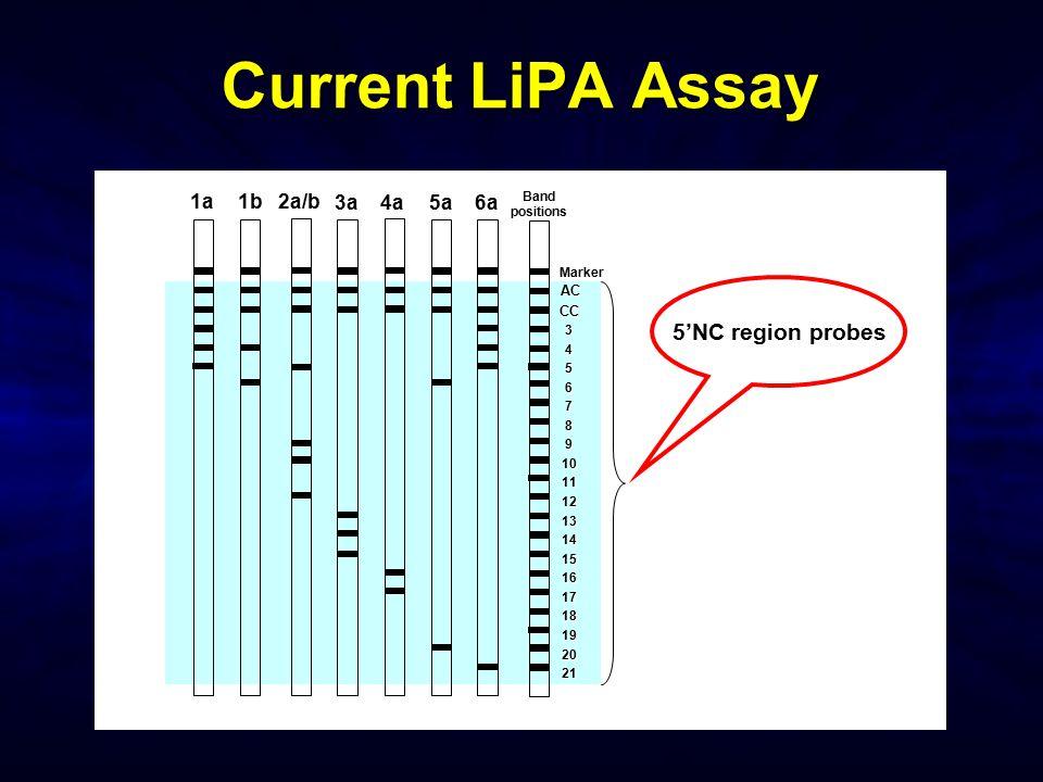 Current LiPA Assay 5'NC region probes 1a 1b 2a/b 3a 4a 5a 6a AC CC