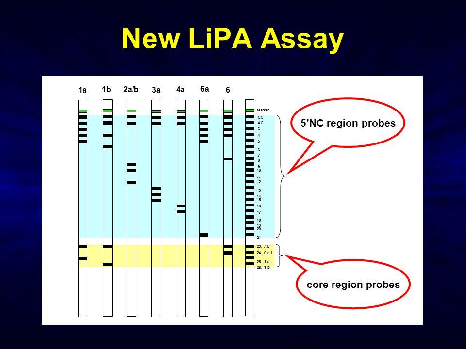 New LiPA Assay 5'NC region probes core region probes 1a 1b 2a/b 3a 4a