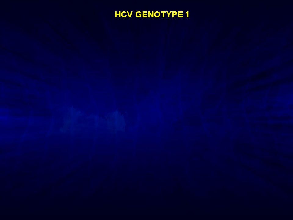 HCV GENOTYPE 1