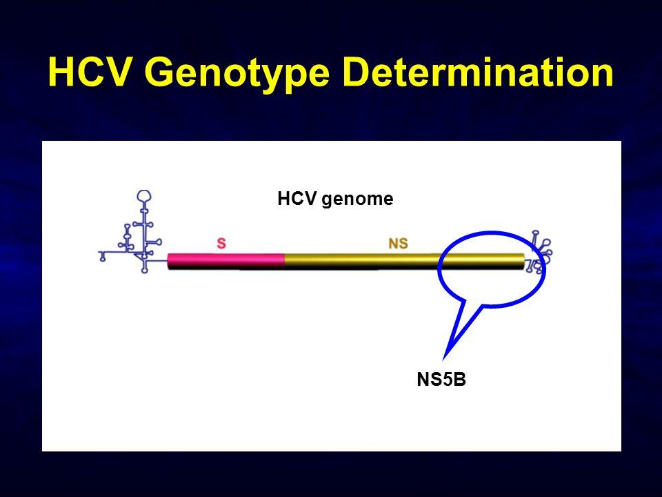 HCV Genotype Determination