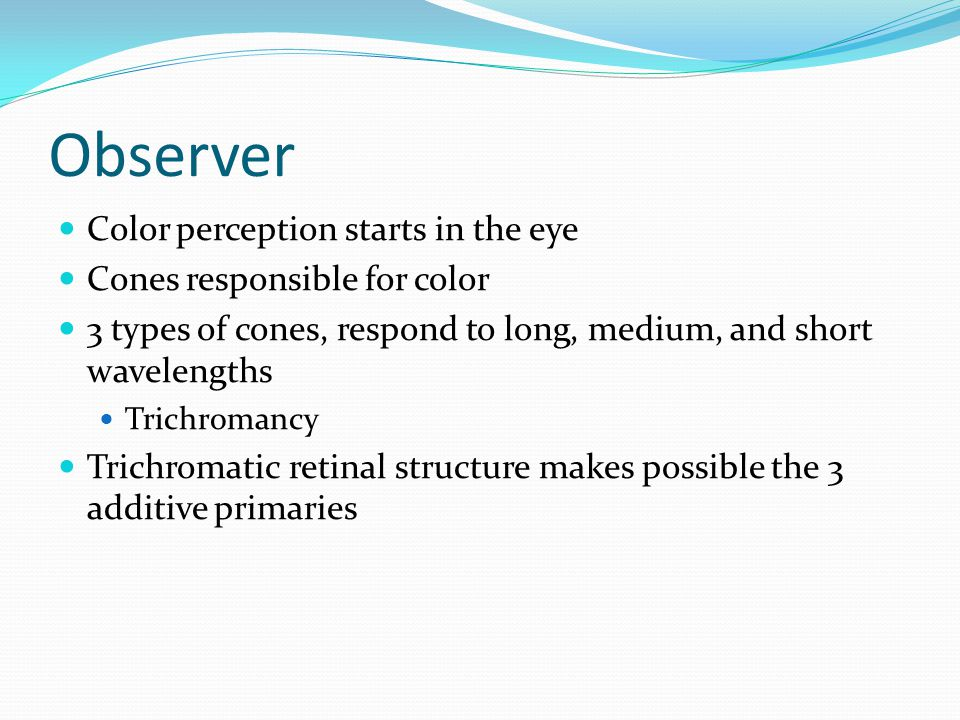 Observer Color perception starts in the eye