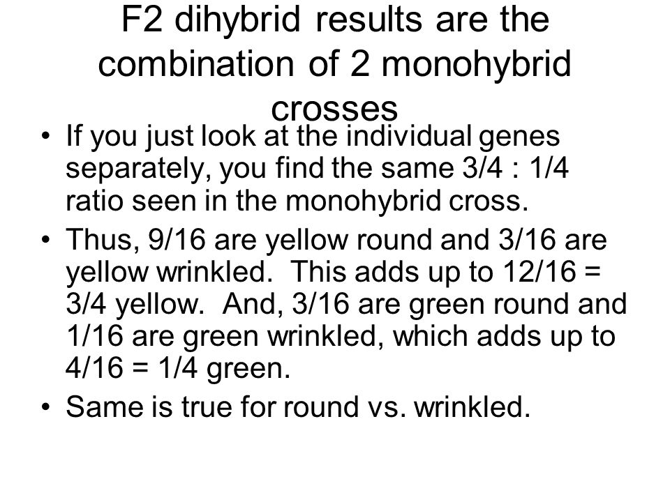 F2 dihybrid results are the combination of 2 monohybrid crosses