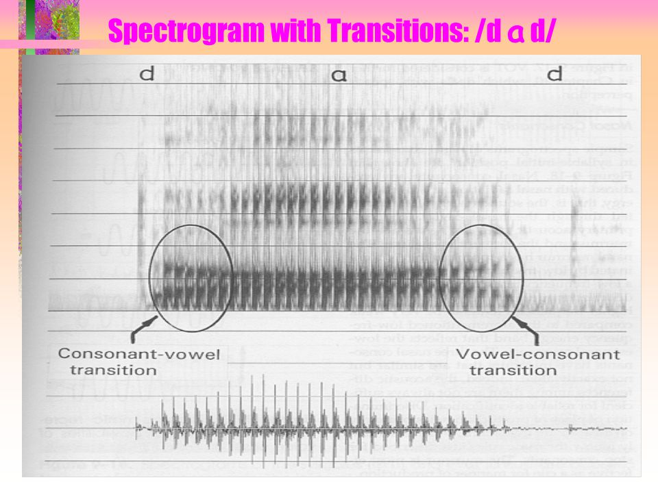 Spectrogram with Transitions: /d a d/