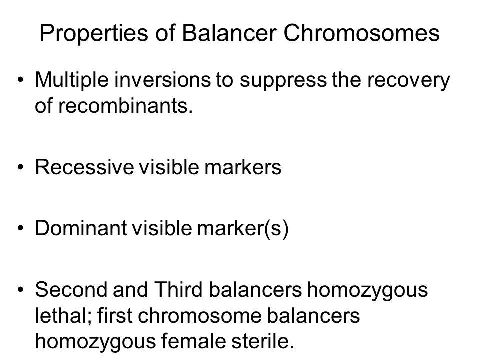 Properties of Balancer Chromosomes