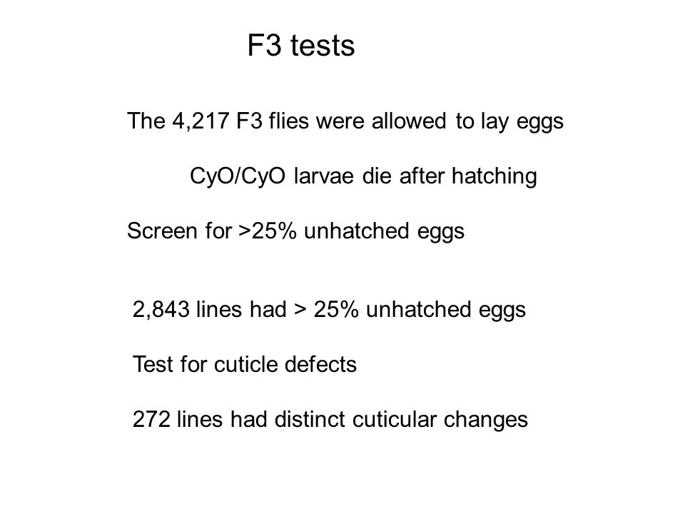 F3 tests The 4,217 F3 flies were allowed to lay eggs