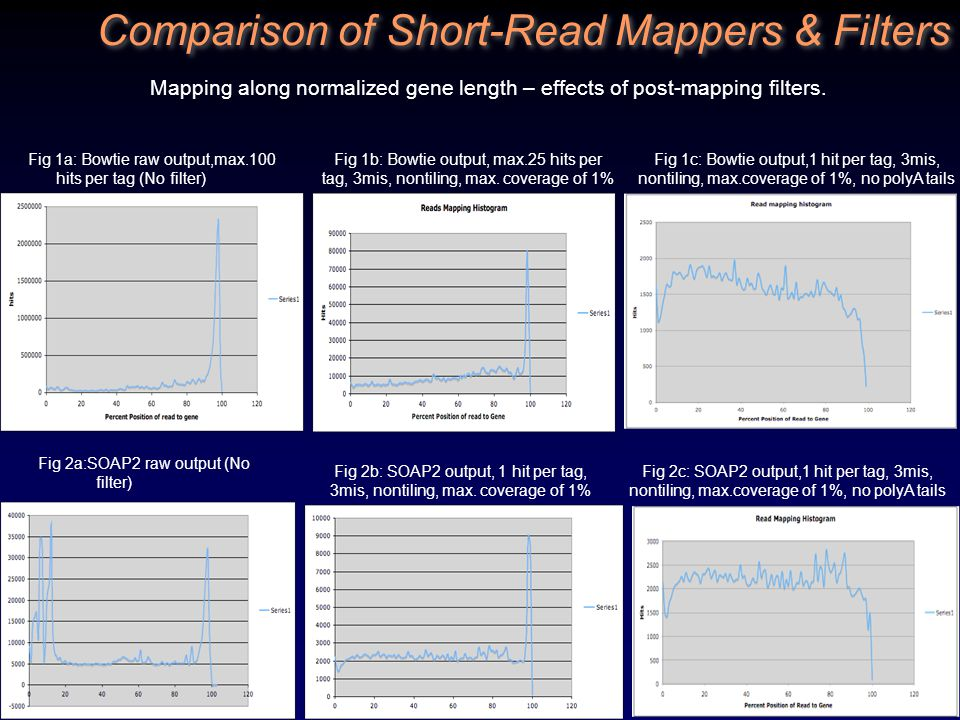 Comparison of Short-Read Mappers & Filters