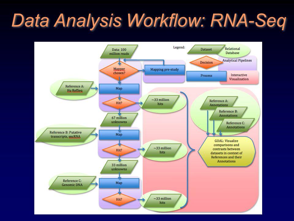 Data Analysis Workflow: RNA-Seq