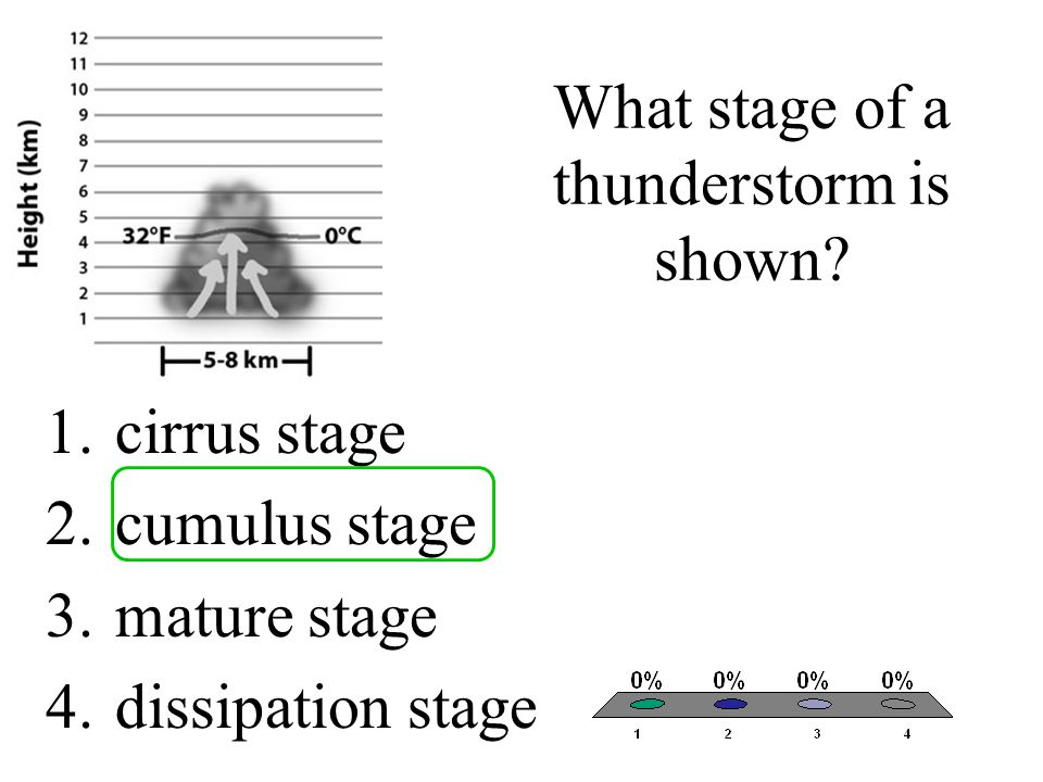 What stage of a thunderstorm is shown
