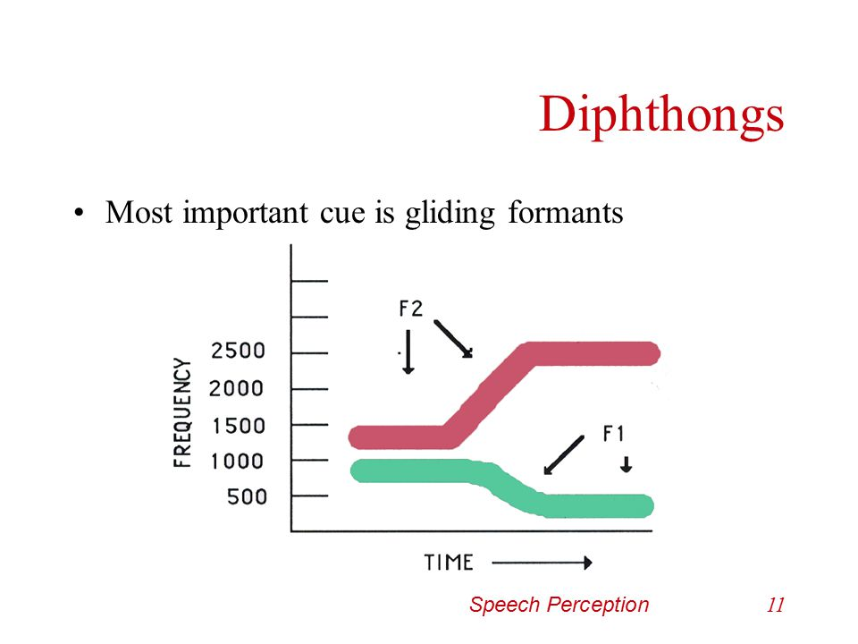 Diphthongs Most important cue is gliding formants Speech Perception