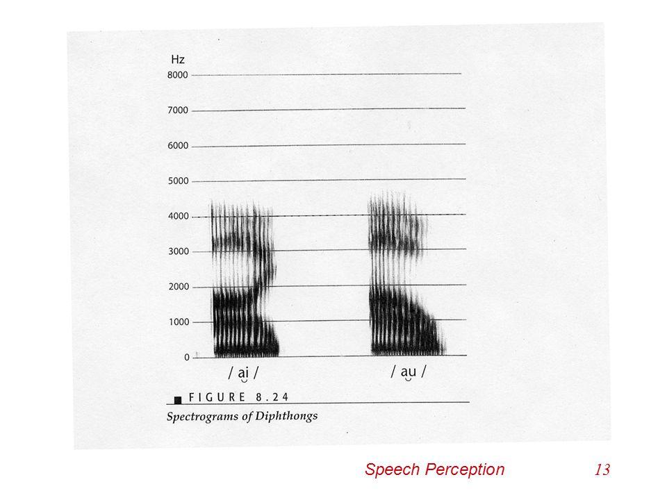 Diphthongs Speech Perception