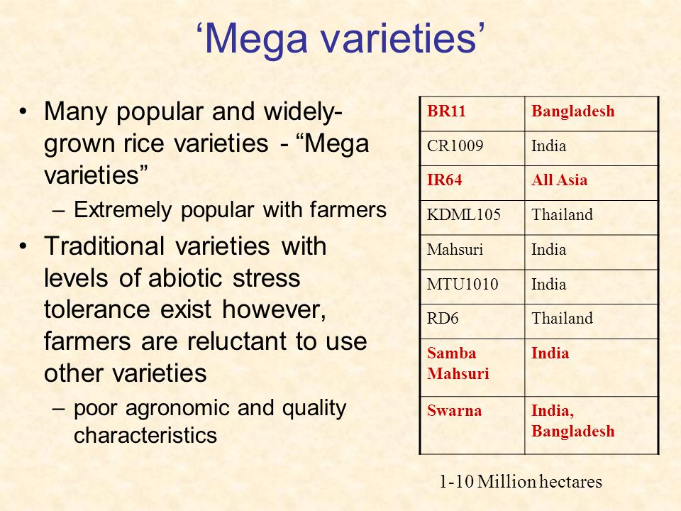 'Mega varieties' Many popular and widely-grown rice varieties - Mega varieties Extremely popular with farmers.