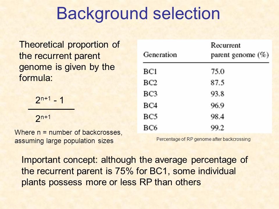 Background selection Theoretical proportion of the recurrent parent genome is given by the formula: