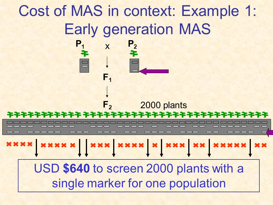 Cost of MAS in context: Example 1: Early generation MAS