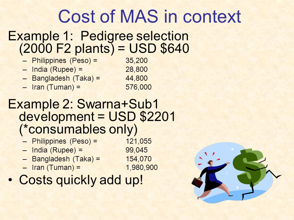 Cost of MAS in context Example 1: Pedigree selection (2000 F2 plants) = USD $640. Philippines (Peso) = 35,200.