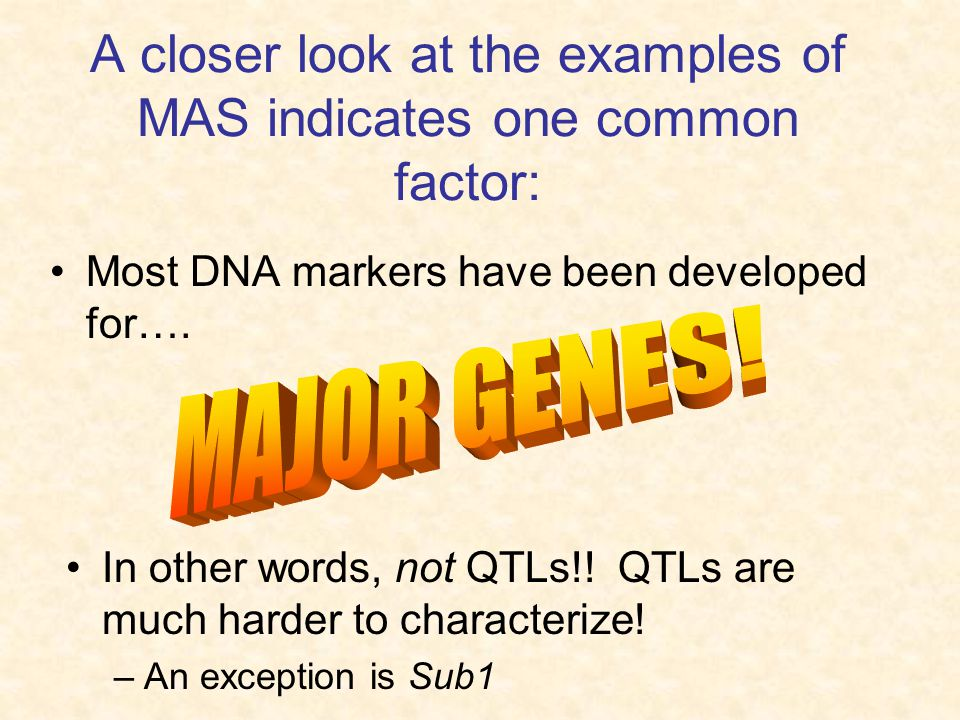 A closer look at the examples of MAS indicates one common factor: