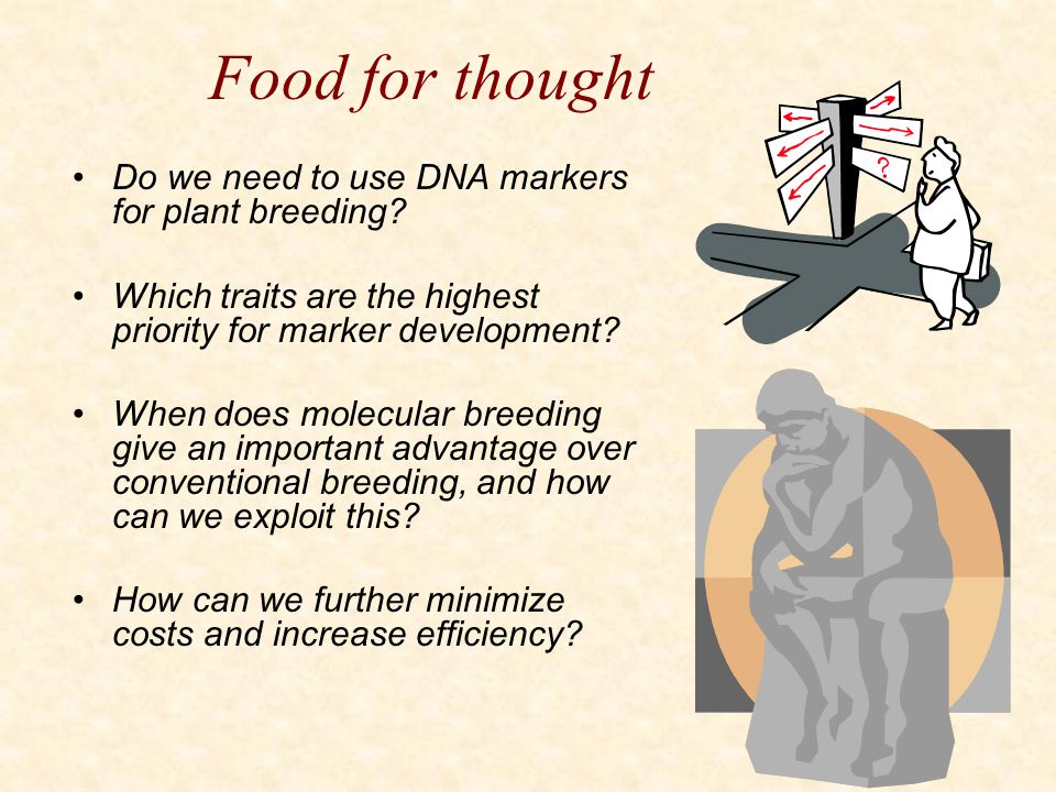 Food for thought Do we need to use DNA markers for plant breeding
