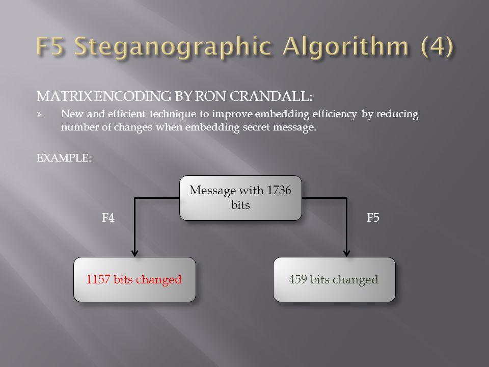 F5 Steganographic Algorithm (4)