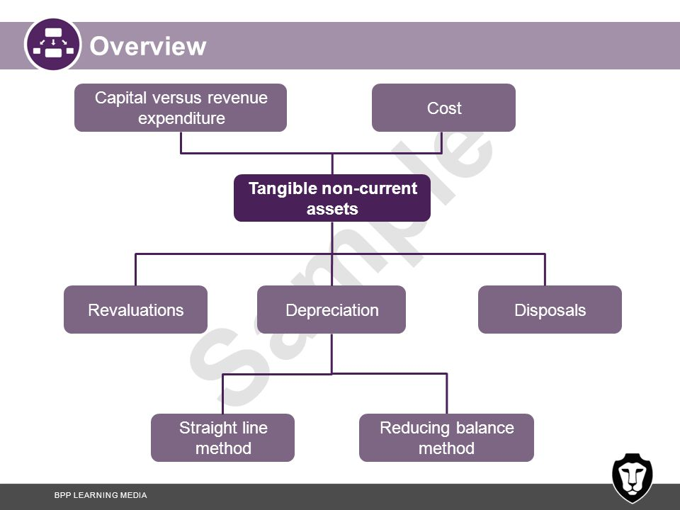 Capital versus revenue
