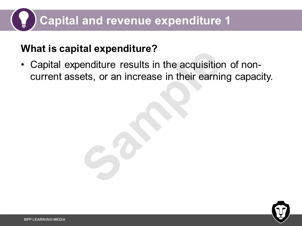 Capital and revenue expenditure 1
