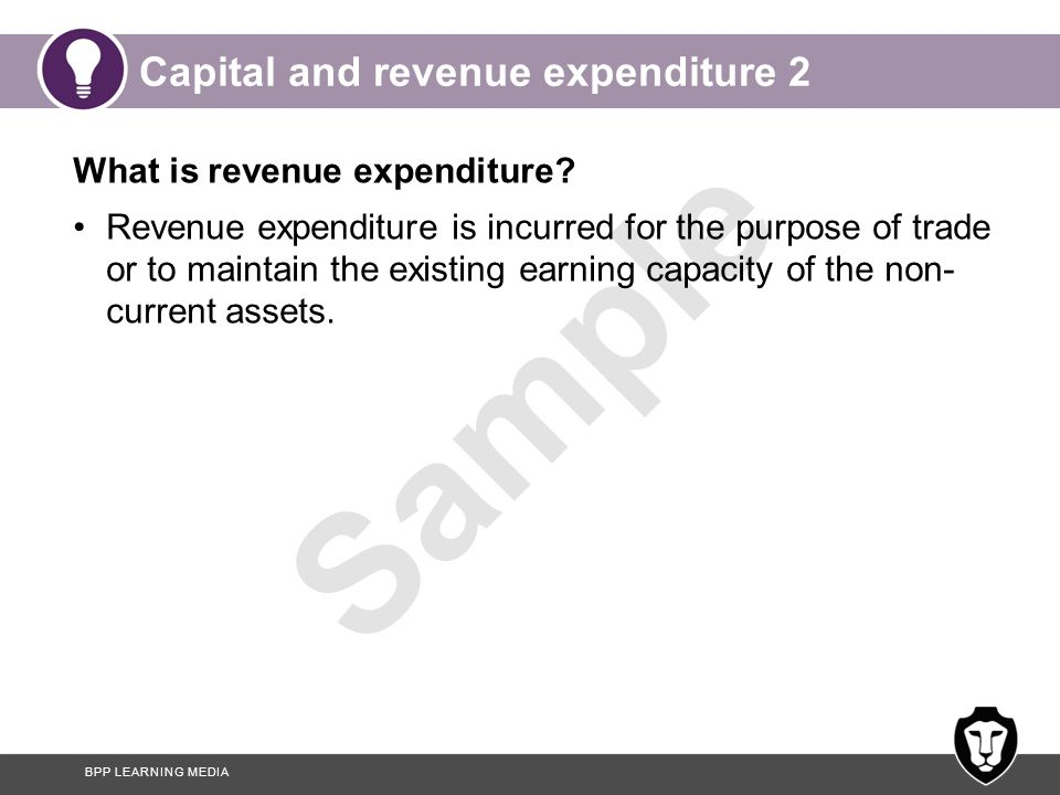 Capital and revenue expenditure 2