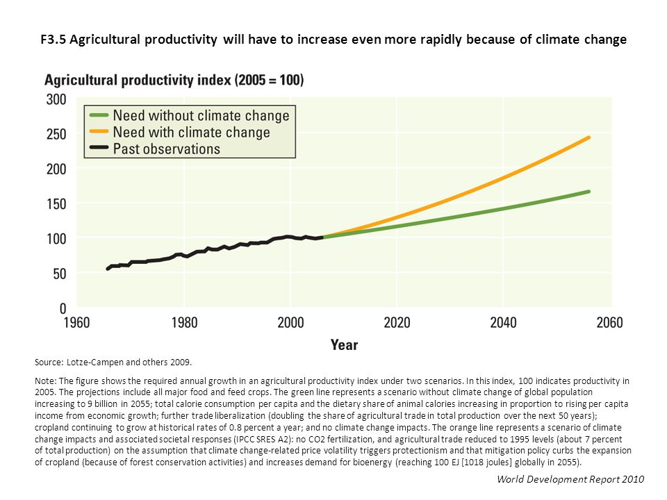 F3.5 Agricultural productivity will have to increase even more rapidly because of climate change