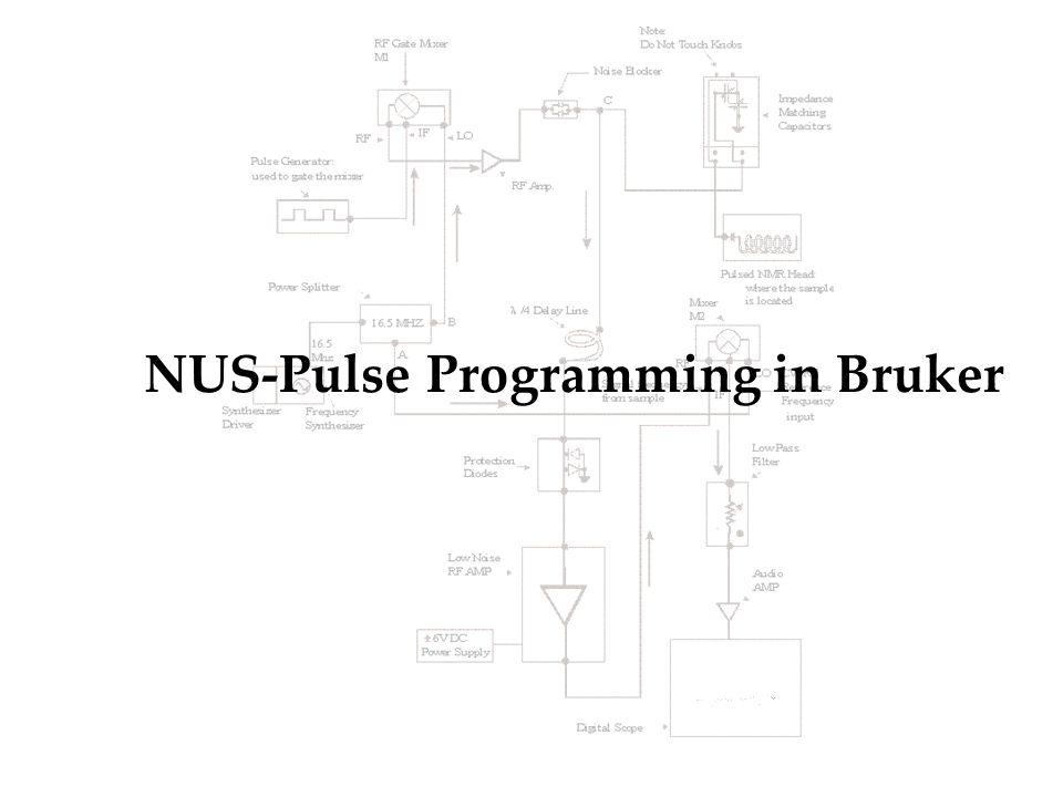 NUS-Pulse Programming in Bruker