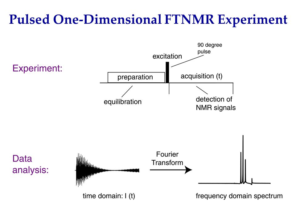 Pulsed One-Dimensional FTNMR Experiment