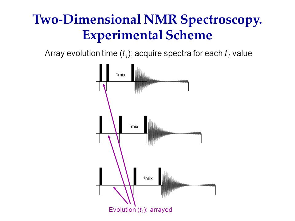 Two-Dimensional NMR Spectroscopy.