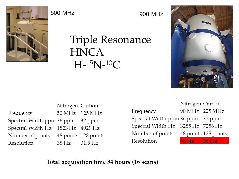 Triple Resonance HNCA 1H-15N-13C 500 MHz 900 MHz