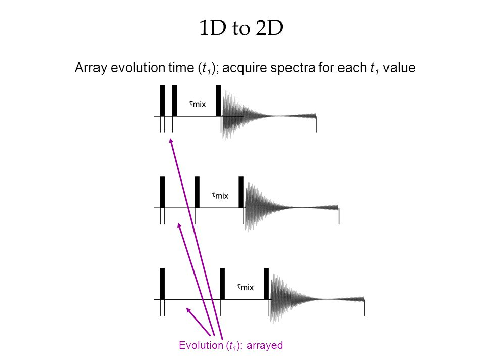 Array evolution time (t1); acquire spectra for each t1 value