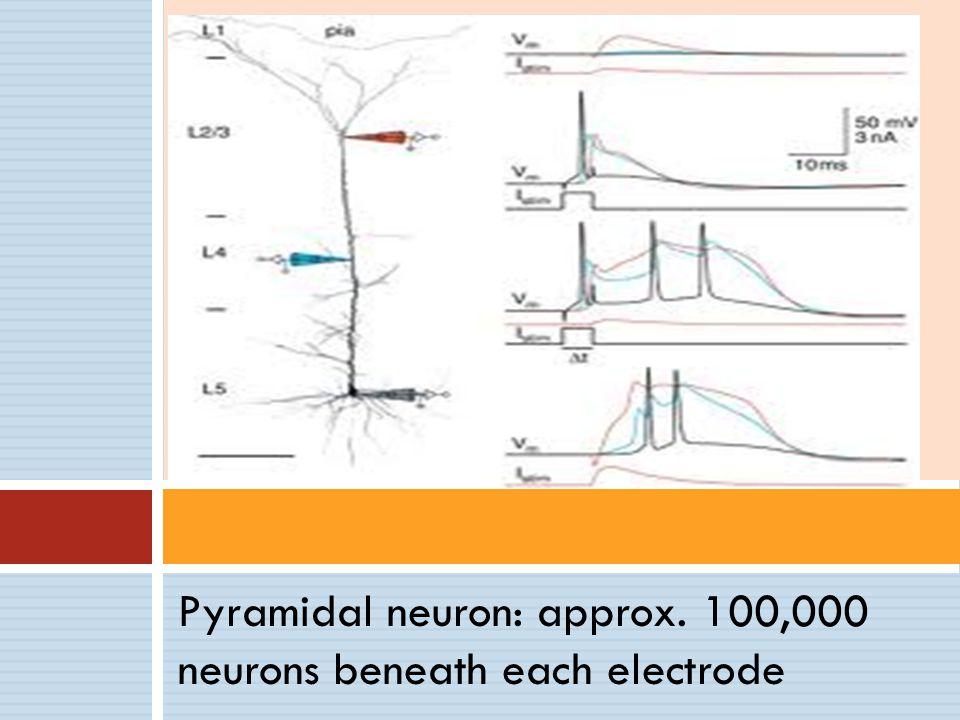 Pyramidal neuron: approx. 100,000 neurons beneath each electrode
