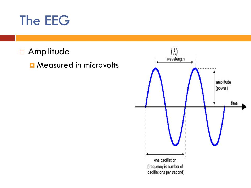 The EEG Amplitude Measured in microvolts