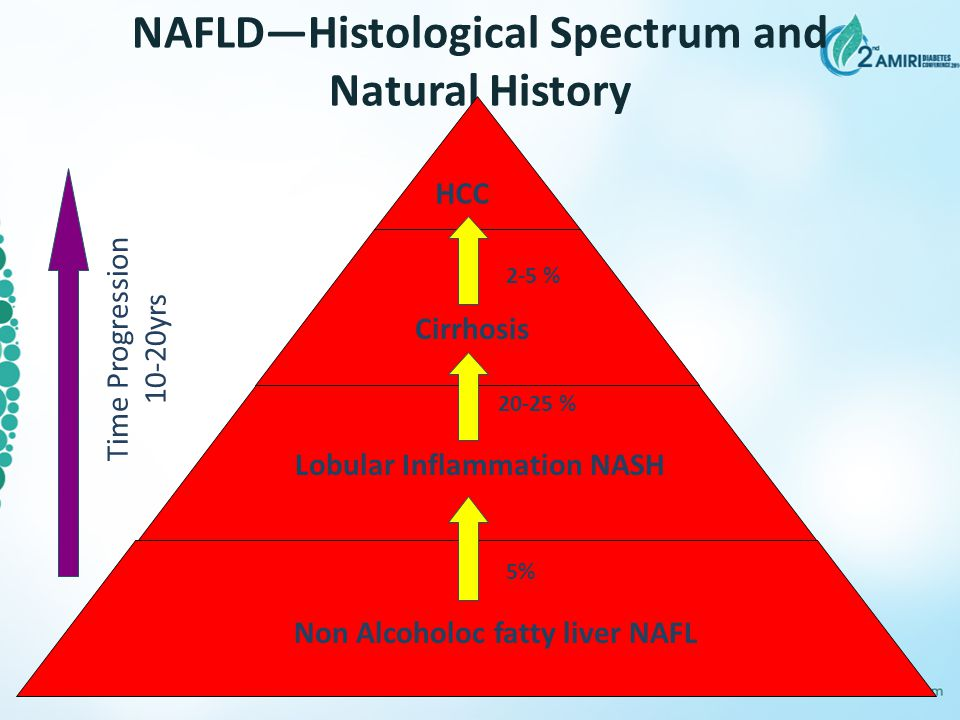 NAFLD—Histological Spectrum and Natural History