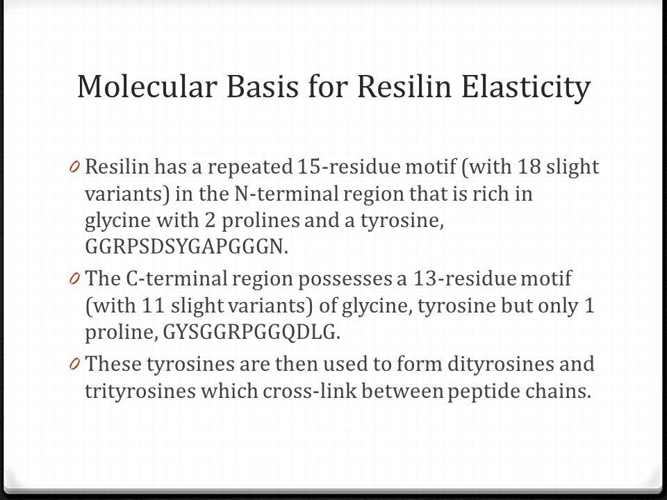 Molecular Basis for Resilin Elasticity