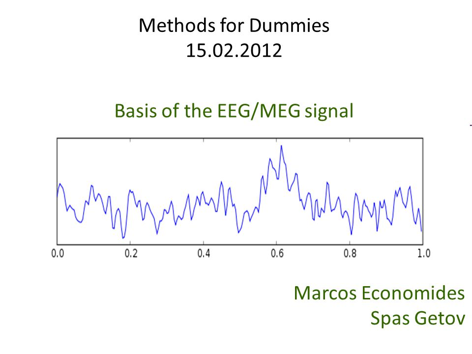 Basis of the EEG/MEG signal