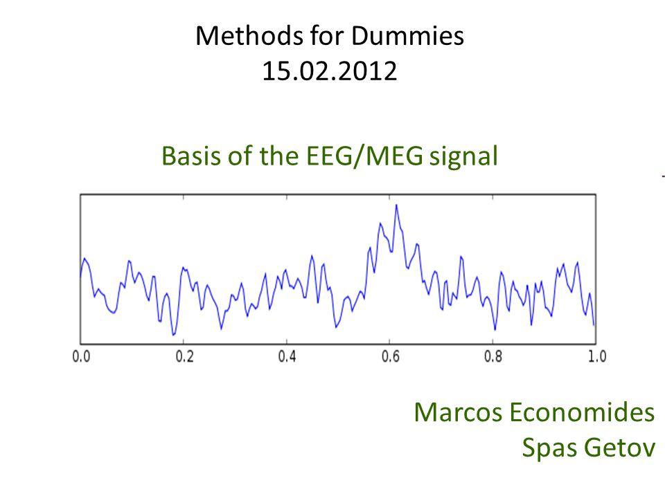Basis of the EEG/MEG signal