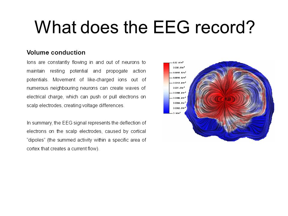 What does the EEG record