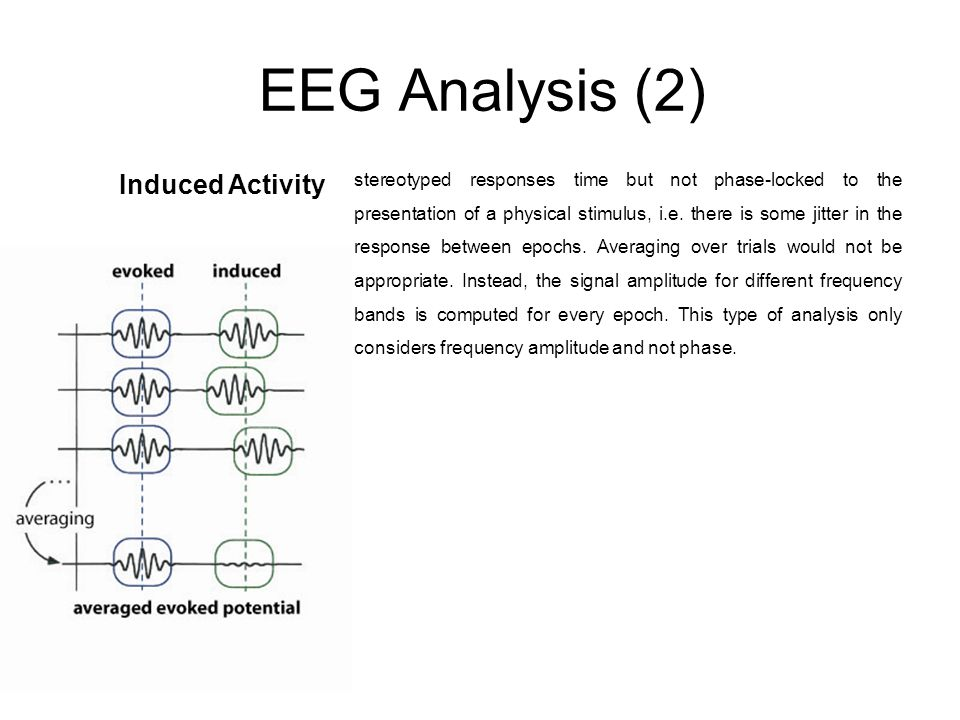 EEG Analysis (2) Induced Activity