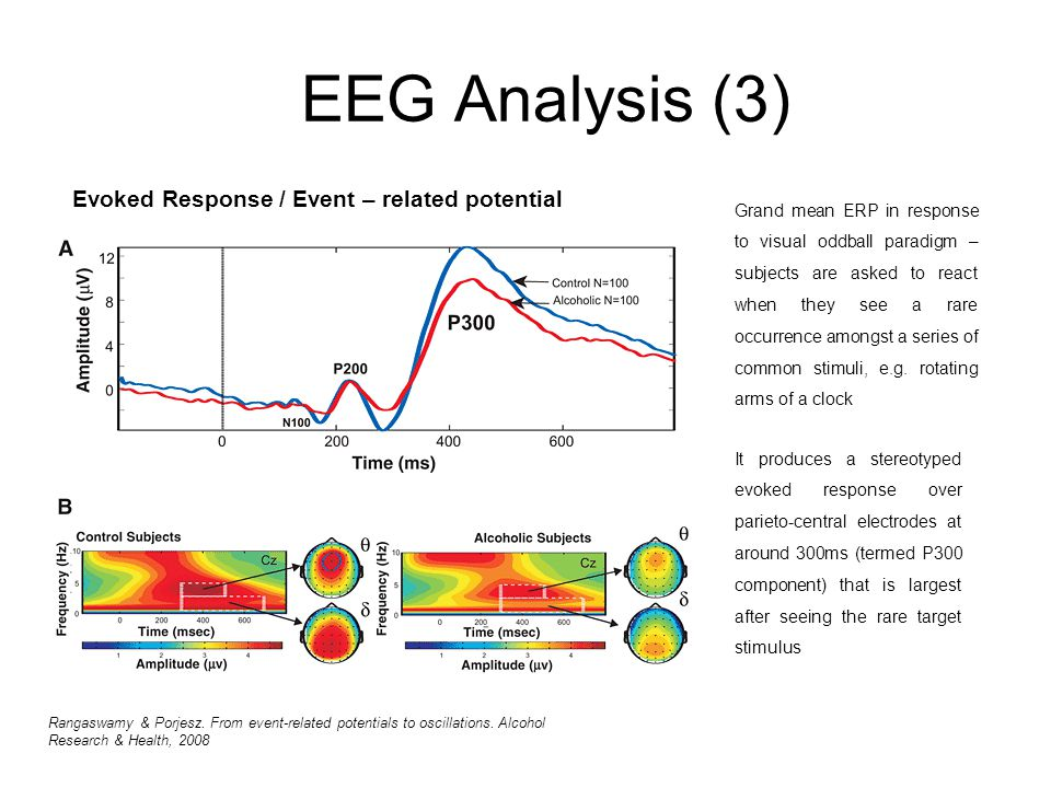EEG Analysis (3) Evoked Response / Event – related potential