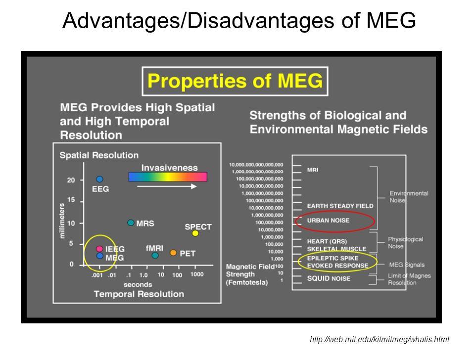 Advantages/Disadvantages of MEG