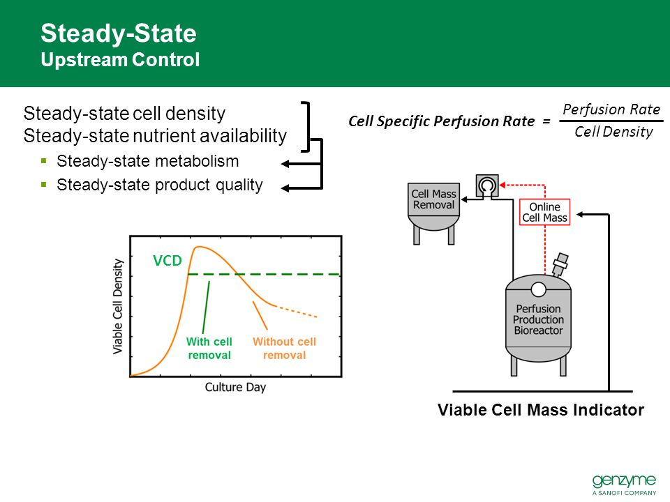 Steady-State Upstream Control
