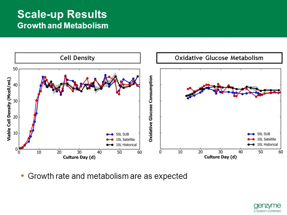 Scale-up Results Growth and Metabolism