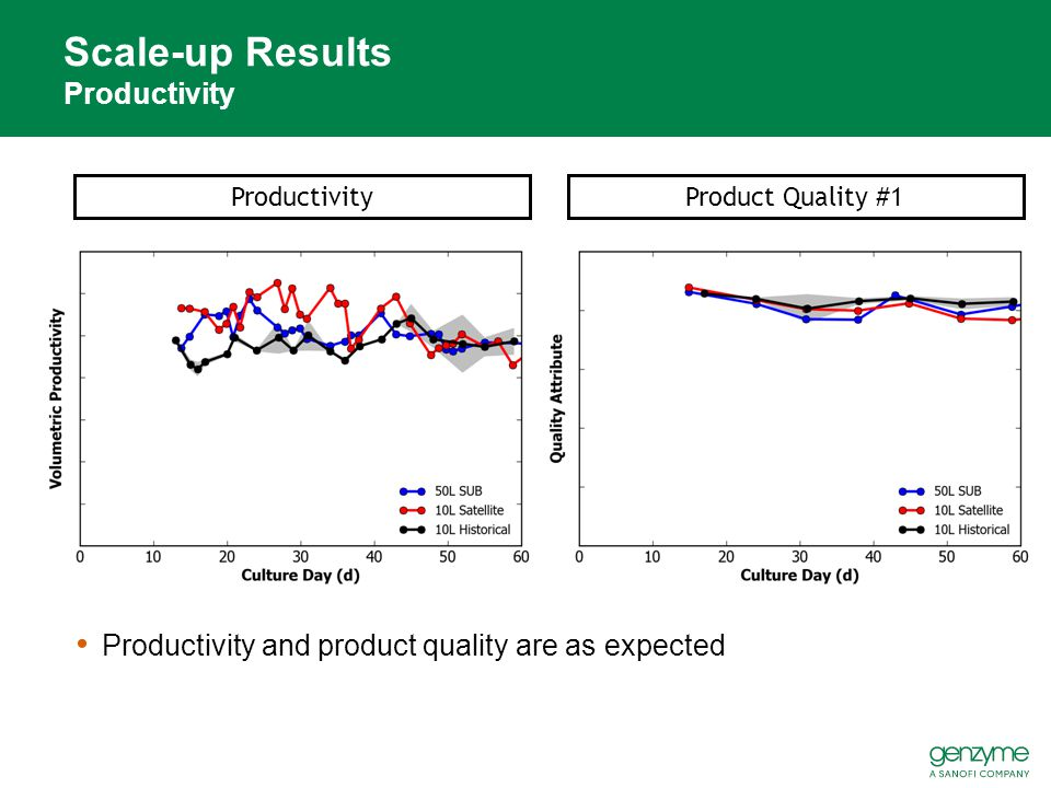 Scale-up Results Productivity