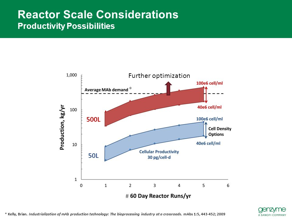 Reactor Scale Considerations Productivity Possibilities