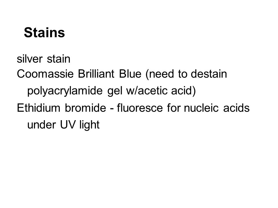 Stains silver stain. Coomassie Brilliant Blue (need to destain polyacrylamide gel w/acetic acid)