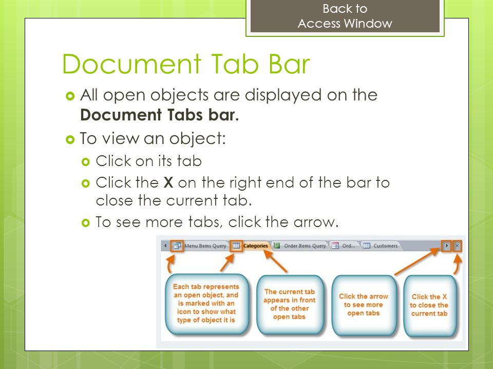 Back to Access Window. Document Tab Bar. All open objects are displayed on the Document Tabs bar.